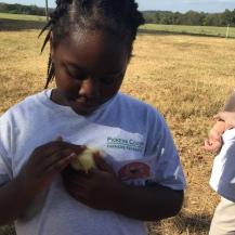 3rd-farm-blog-6-2016