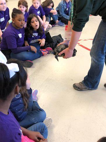 3rd grade blog March 2018 1